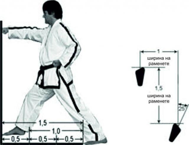"""Определение за """"ширина на раменете"""" и точния размер"""