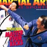 martial_arts_combat_sports_2001a